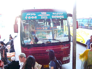 ish_bus2.jpg