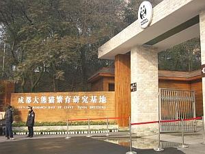 panda_gate.jpg