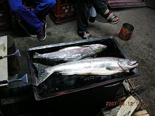 GN125_sirakaba_BBQ_1_sake.jpg